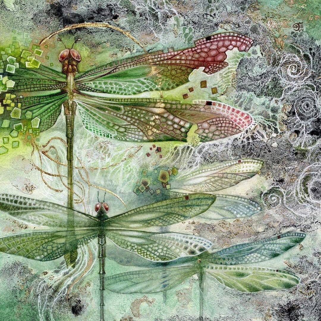 Shadowscapes dragonflies by Stephanie Pui-Mun Law 1